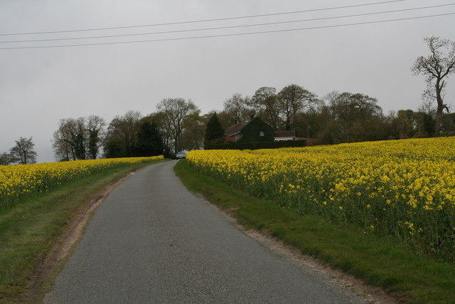 Road from Thornton Crossing to Thornton