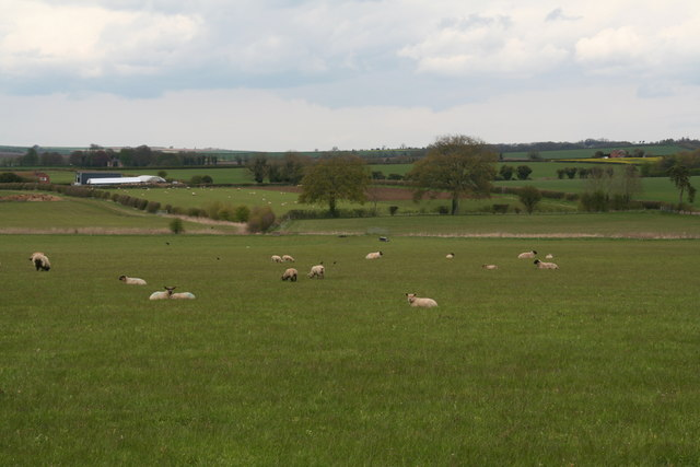 Grazing land north of the road to Mareham on the Hill from Horncastle