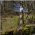 SD3586 : Finger post near Newby Bridge by Ian Taylor