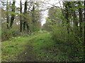 TM1152 : The Sheepwalk Bridleway to the B1078 Needham Road by Geographer