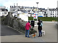 C8540 : Dog walkers, Portrush by Kenneth  Allen