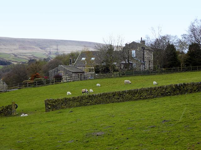 Swift Place Farm