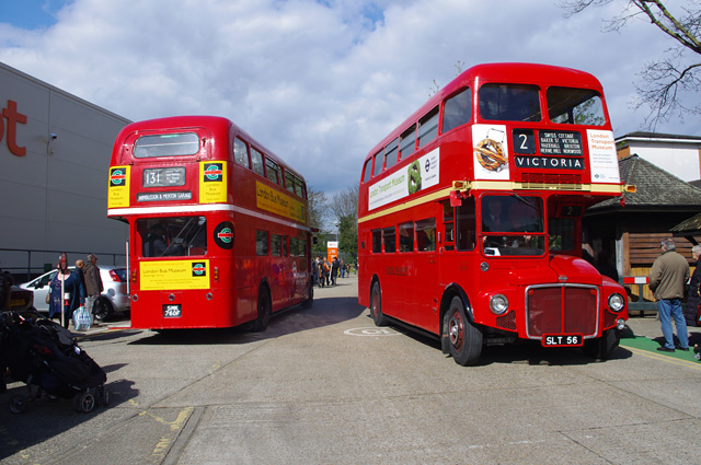 A pair of Routemasters