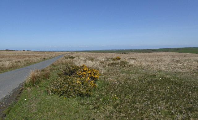 Bursdon Moor south-east of Hartland, Devon