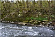 SE2436 : Rein Road, River Aire, Newlay, Leeds by Mark Stevenson