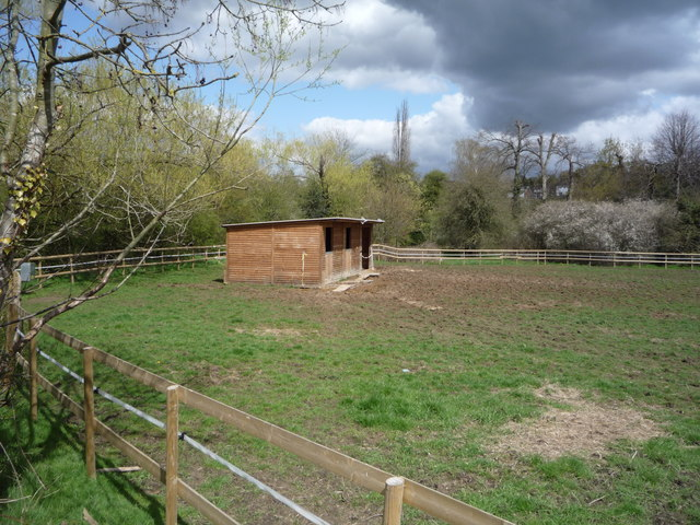 Grazing and stables, Enfield by JThomas