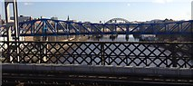 NZ2563 : Bridges over the Tyne by Dave Pickersgill