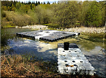 """SU9471 : Floating platforms for set of location filming for """"Annihilation"""" by Phillip Williams"""