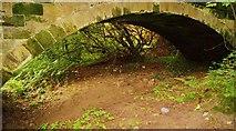 SE2236 : Calverley Pack Horse Bridge, Rodley, Leeds by Mark Stevenson