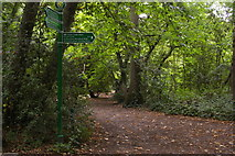 TQ3870 : Junction on the combined Green Chain / Capital Ring walk, Beckenham Place Park by Christopher Hilton