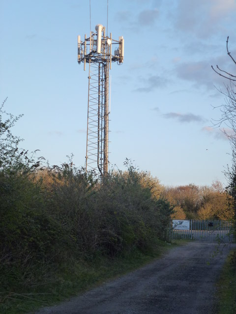 Communications mast near Wells-Next-The-Sea