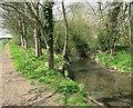 SP2655 : Path beside the River Dene by Des Blenkinsopp
