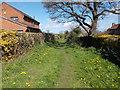 SE3948 : Footpath - Glebe Field Drive by Betty Longbottom