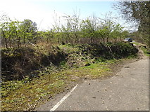 TL1814 : Footpath to the B653 Cory-Wright Way by Geographer
