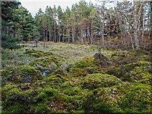 NH6750 : Loch na Girra by valenta