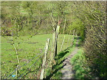 SE0927 : The Calderdale Way approaching the footbridge over Shibden Brook, Northowram by Humphrey Bolton