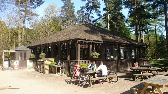 The Café in the Woods