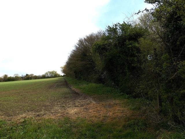Footpath to High Road & Swilland Manor