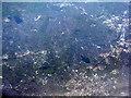 SP0685 : Southwest Birmingham from the air by M J Richardson