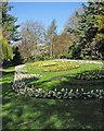 SK5640 : Nottingham Arboretum: spring bedding by John Sutton