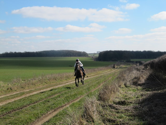 Kiplingcotes Derby