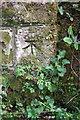 NY6624 : Benchmark on railway bridge abutment by Roger Templeman
