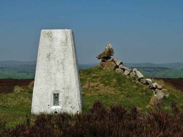 The triangulation pillar on Revidge Moor