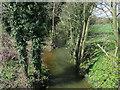 TL9694 : Stream near Lower Stow Bedon by Hugh Venables
