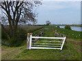 SK8168 : Clapper gates along the River Trent by Mat Fascione