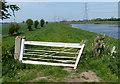 SK8169 : Clapper gates along the River Trent by Mat Fascione