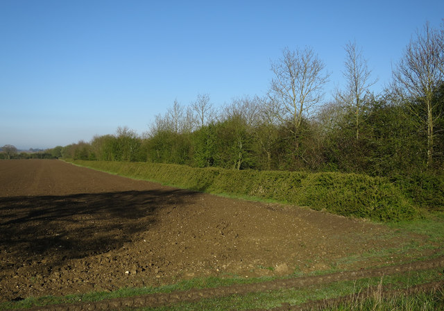 Field by Stour Valley Path
