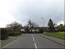 TM1551 : Church Meadow, Henley by Geographer