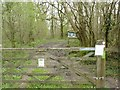 ST5107 : Sign and footpath at Brackett's Coppice by Becky Williamson