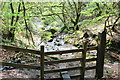 ST2097 : Footpath & stream, Cwm Dows by M J Roscoe