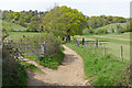 TQ0347 : The Downs Link near Chilworth by Alan Hunt