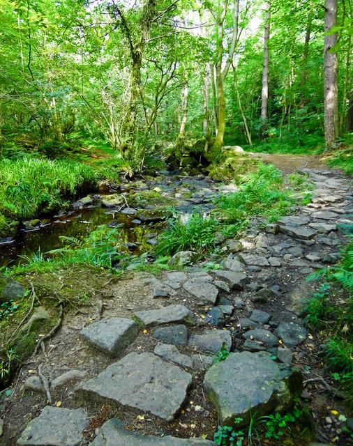 Stony Footpath along May Beck