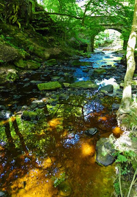 May Beck flowing towards Falling Foss