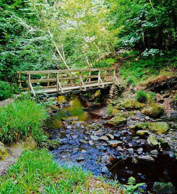 Foot Bridge over Little Beck