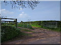 SS9907 : Farm track near Sunnyburrow farm by Rob Purvis