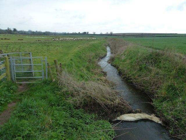 Mill stream off Milton Brook