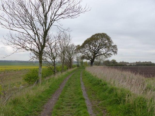 Ferma Lane