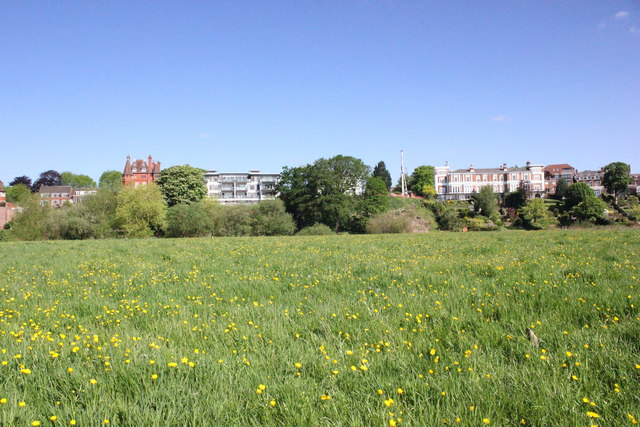 The Meadows, Chester
