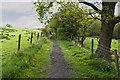 SD8134 : Footpath to Hag Wood by Ian Greig