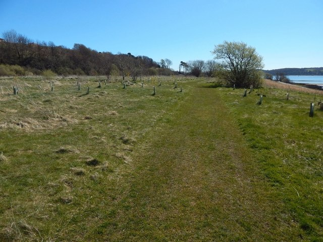 Havoc Grassland