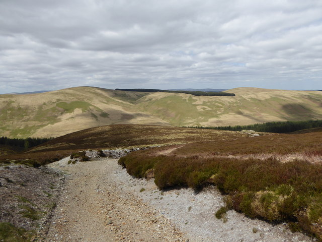 Track above Caple Gill