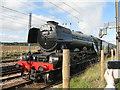 NT5179 : The 'Flying Scotsman' at Drem by M J Richardson