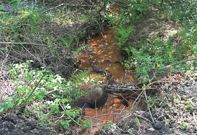 Polluted stream in Dunvant