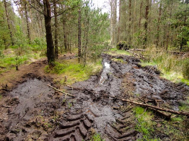 4x4 Ruined Footpath, Pye Rigg
