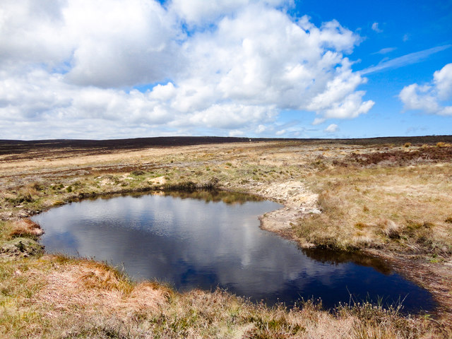 Small Ponds, High Moor