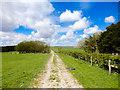 SE9297 : Grassland, Low North Moor by Scott Robinson
